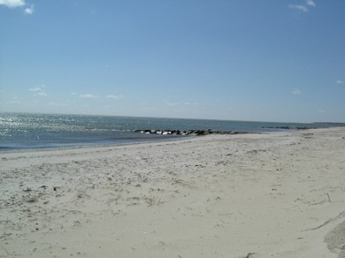 South  Yarmouth, Bass River Cape Cod vacation rental - Parker River Beach