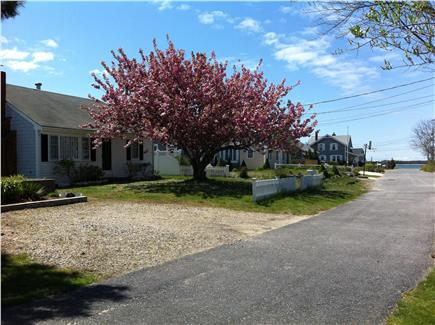 West Yarmouth Cape Cod vacation rental - View of the cottage from the road