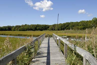 Mashpee Cape Cod vacation rental - Hamblin's Pond across the road