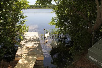 Brewster Cape Cod vacation rental - Pond and dock with friends