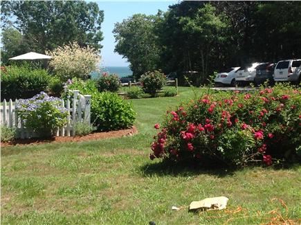New Seabury New Seabury vacation rental - Beach view from front yard