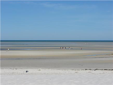 East Orleans Cape Cod vacation rental - Nearby beautiful Skaket Beach at low tide