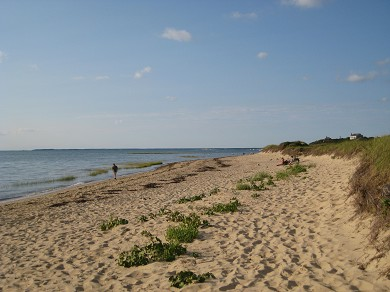 Eastham Cape Cod vacation rental - Cape Cod Bay Beach