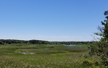 Eastham Cape Cod vacation rental - Marsh View From Deck