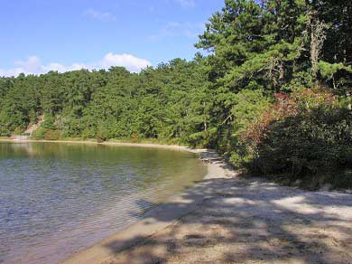 Wellfleet Cape Cod vacation rental - Duck Pond