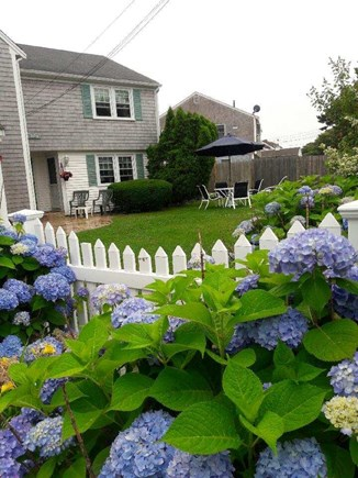 Bass River / South Yarmouth Cape Cod vacation rental - Front yard with table and chairs