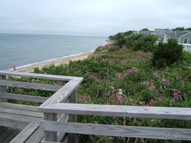 New Seabury, Popponesset, Mash New Seabury vacation rental - 2 min walk to one-of-a-kind vista from Maushop Bluff to beach