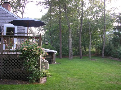 Harwich Cape Cod vacation rental - Spacious yard with weber grill , great for lawn games