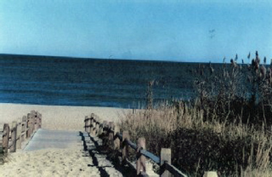 Eastham Cape Cod vacation rental - Walkway to Coast Guard Beach, voted in top 10  best in the US
