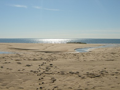 Wellfleet Cape Cod vacation rental - Wellfleet Vacation Rental ID 16094