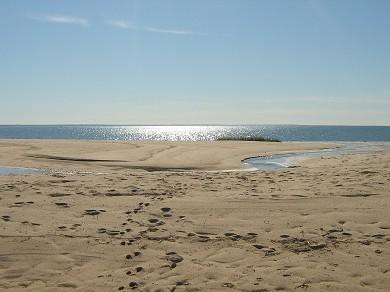 Wellfleet Cape Cod vacation rental - Wellfleet Vacation Rental ID 16094