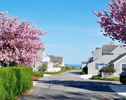 New Seabury, Mashpee, Poppy New Seabury vacation rental - (Gated) Maushop Village's Private Streets lead to the Ocean!!!