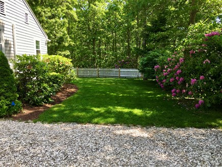 New Seabury, Mashpee, Poppy Cape Cod vacation rental - Side Yard With Lawn and Mature Landscaping