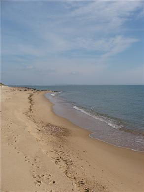 Mashpee, Popponesset Cape Cod vacation rental - Mashpee Vacation Rental ID 16239