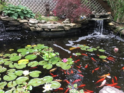 Harwich Cape Cod vacation rental - One of our favorite features – Koi pond from sitting area