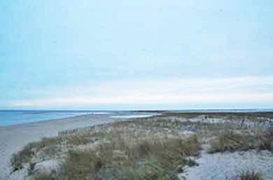 Dennis Cape Cod vacation rental - Late Afternoon Walk