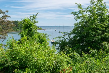 Woods Hole, Falmouth Woods Hole vacation rental - View of Little Harbor, right across the street.