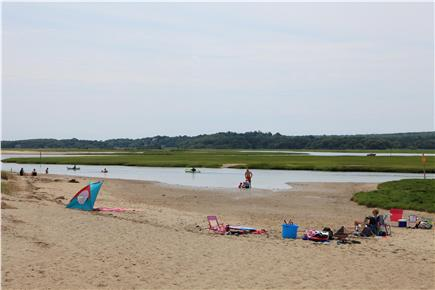 Sandwich (Town Neck) Cape Cod vacation rental - Tidal Marsh----Great for Children!