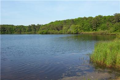 Harwich Cape Cod vacation rental - Aunt Edie's pond to visit, swim or fish-100 yards from house