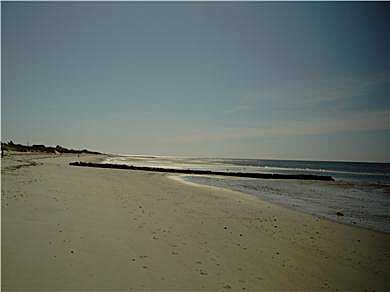 West Dennis Cape Cod vacation rental - Five Steps down to Your Private Beach in West Dennis, Cape Cod