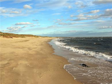 Chatham Cape Cod vacation rental - Hardings Beach