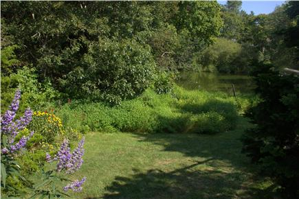 Woods Hole Woods Hole vacation rental - Secluded garden with pond - great retreat on windy days