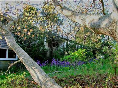 Brewster Cape Cod vacation rental - Path from parking area