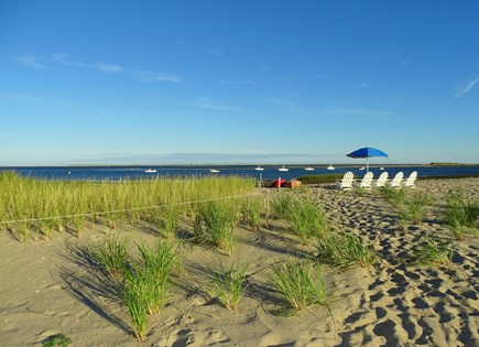 North Chatham, Beach, w Kayaks Cape Cod vacation rental - Walk a little farther past our newly planted dune grass...