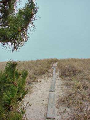 Near Lighthouse beach/Chatham Cape Cod vacation rental - Walk 3 minutes to gorgeous, private beach