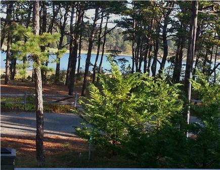 Wellfleet Cape Cod vacation rental - View in early AM from living room window to marsh at high tide