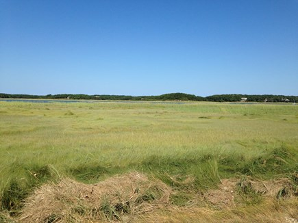 Wellfleet Cape Cod vacation rental - Marsh near house