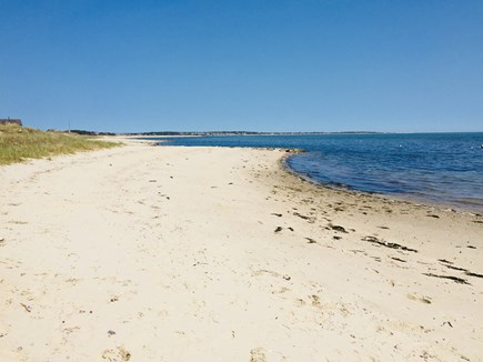 S. Chatham Cape Cod vacation rental - Walk approx. 1000 feet to this beautiful beach on the Sound