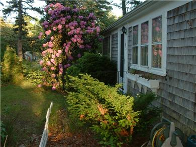 South Dennis Cape Cod vacation rental - Cape Cod getaway!!