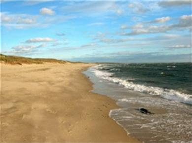 Chatham, short walk to Hardings Beach Cape Cod vacation rental - Hardings Beach is just .2 of a mile away safe walk for children