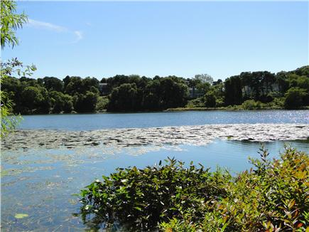 Chatham Cape Cod vacation rental - 3 minute walk to Lover's Lake