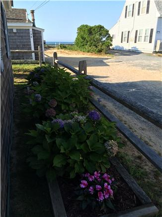 Dennis Port Cape Cod vacation rental - Just 50 steps to the beach!