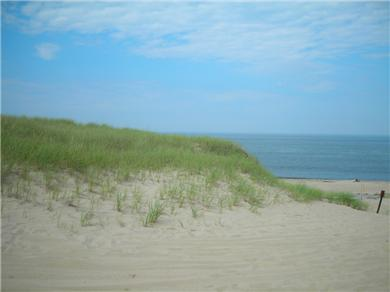 Truro Cape Cod vacation rental - In the day, where the seals play, just across the way!