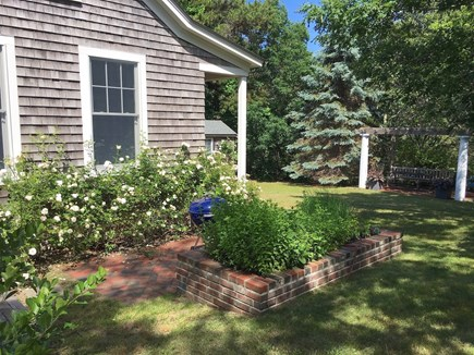 South Truro Cape Cod vacation rental - Kitchen looks out on herb patch & pergola with seating area.