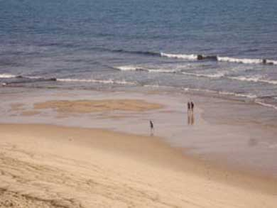 Truro Cape Cod vacation rental - Long Nook Beach (nearest ocean beach)
