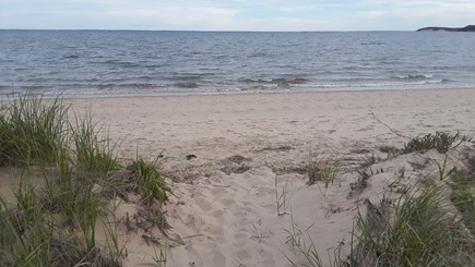 Wellfleet Cape Cod vacation rental - View of the private beach and bay.  GREAT clean swimming!