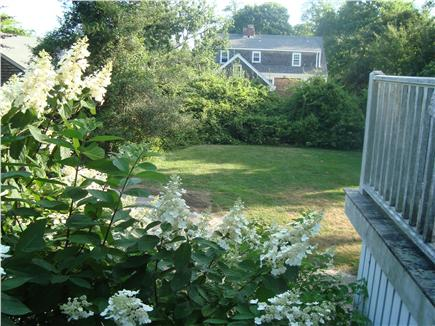 Woods Hole Woods Hole vacation rental - Yard