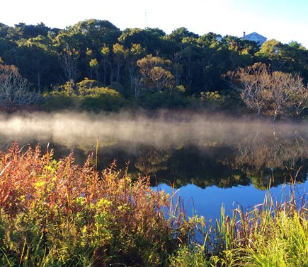 N.Truro Bay Village Cape Cod vacation rental - Pilgrim pond