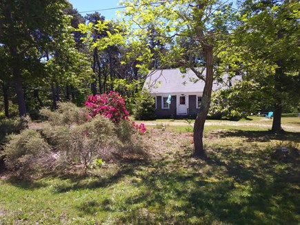 Eastham Cape Cod vacation rental - Eastham Vacation Rental ID #18503, June 2017