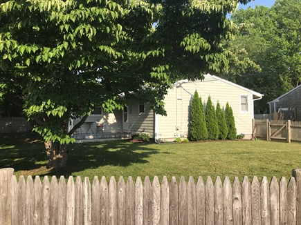 Hyannis Cape Cod vacation rental - Our dog friendly large yard is completely fenced-in
