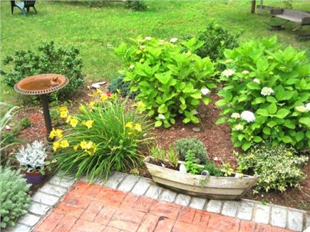 Dennis Cape Cod vacation rental - Pick the herbs from different parts of the garden.