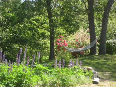 Dennis Cape Cod vacation rental - Enjoy the garden, bird watch or lie in the hammock