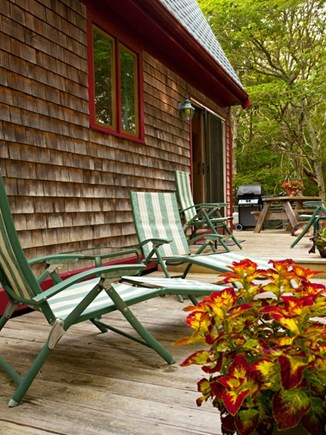 North Truro Cape Cod vacation rental - The back deck. Mosquito Magnet on site!