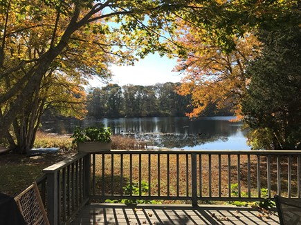 Orleans Cape Cod vacation rental - View from the deck in the fall