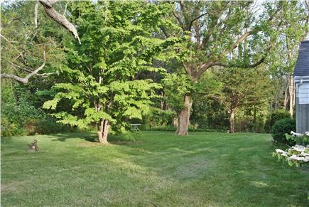 Orleans Cape Cod vacation rental - The Back Yard