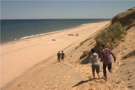 South Wellfleet Cape Cod vacation rental - Lecount Hollow beach sand dunes